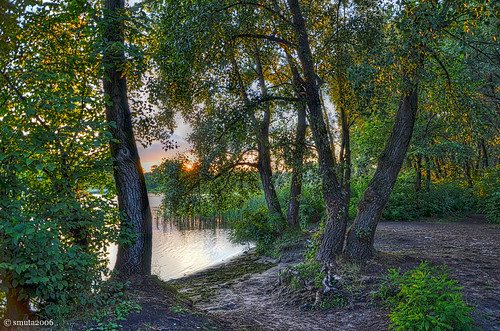 wood light sunset summer sky sun sunlight plant reflection tree green beach reed nature water grass leaves cane creek river landscape island evening leaf stem bush woods nikon scenery europe branch glow grove ripple bank ground ukraine foliage rush twig trunk greenery gleam riverfront ripples shrub riverbank kiev kyiv hdr magichour goldenhour duckweed backwater waterscape copse bole dnieper dnipro photomatix d5100