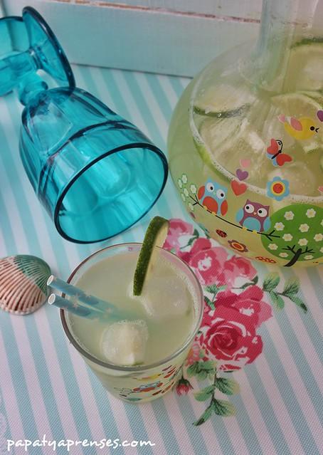limonlu kavun suyu (9)