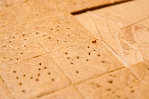january 28. 29. graham crackers. marshmallows. lemon pound cake_0033_edited-1