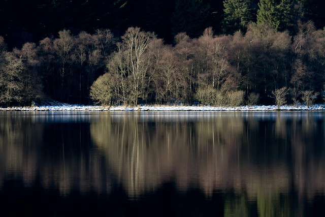 Reflections over snow