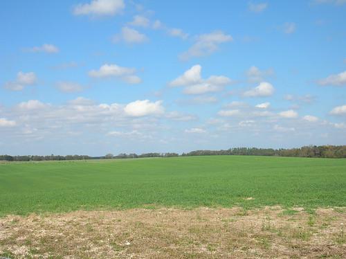 desktop landscape florida farm fl archer