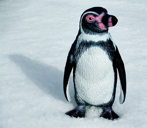 Effect of Google Penguin Updates on SEO