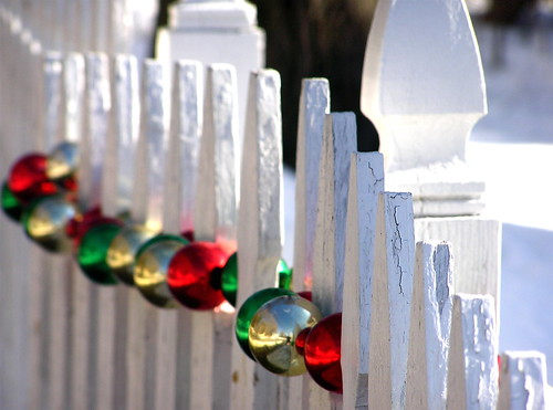 holiday fence | by Muffet