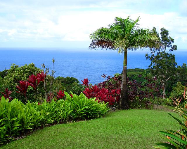 Garden Of Eden Maui Hawaii Garden Of Eden A Botanical