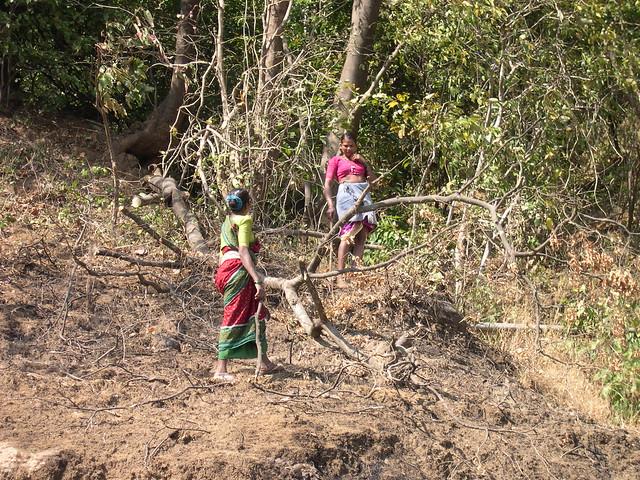 nenets woman cutting firewood - photo #31