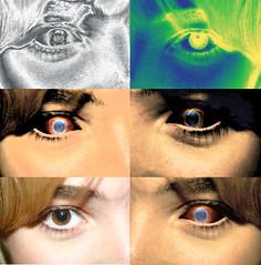 eyelash, eyelash extensions, close-up, eyebrow, blue, eye, organ,
