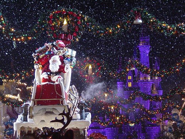 The Christmas Light Company
