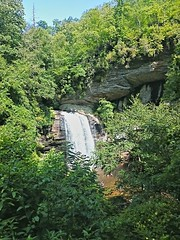 Looking Glass Falls, Pisgah National First