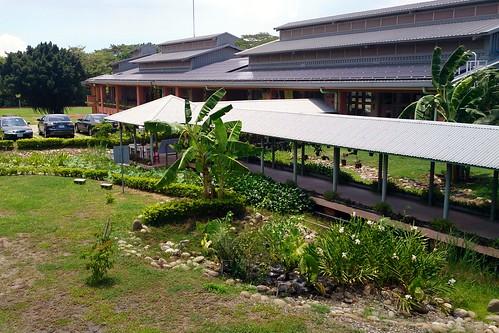 永安國小新校舍三層屋頂與生態池。李育琴攝