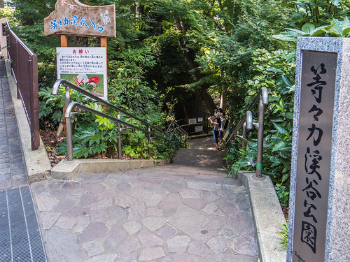 Todoroki Valley entrance