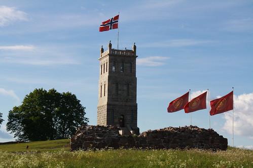 Slottsfjellet (82)