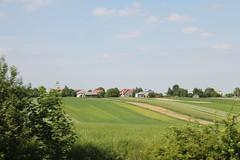 Jeżówka village
