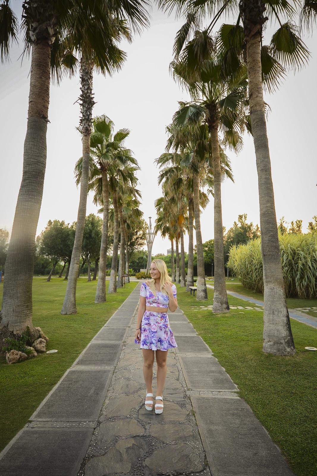 palmtrees_3