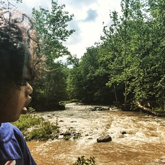 Checking out Six Mile Creek before it rains again