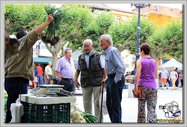 Feria de los ajos en Briviesca (8)