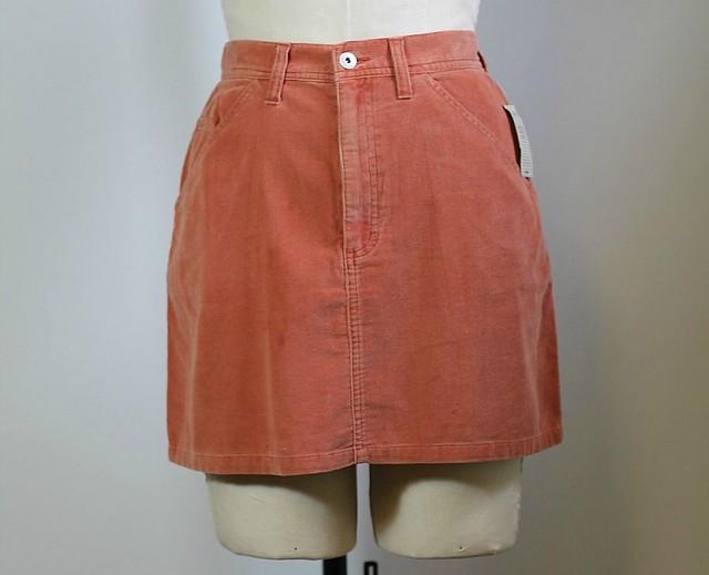 express skirt 1 blog