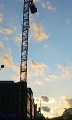 DC Dance of the Cranes 59066