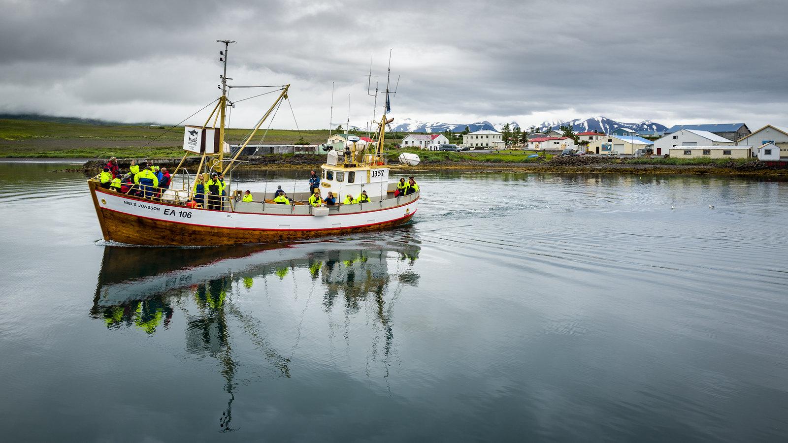 Niels Jonsson whale watcher