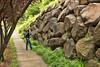 Retaining Wall, Alameda, Portland by rowjimmy76