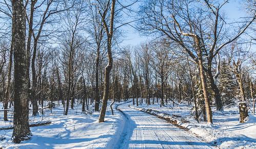 Winter Road - Shivering Sands, Door Peninsula