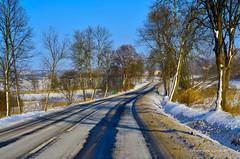Jurassic trails - winter ❄