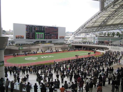 阪神競馬場,パドック