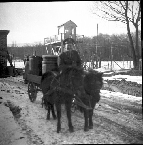 Man and Horse Cart