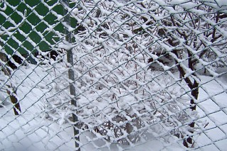 Turkey (Istanbul) Fence in snow