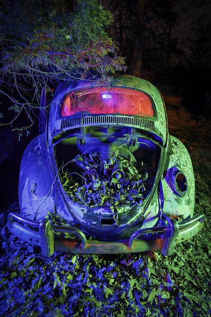RGB Beetle