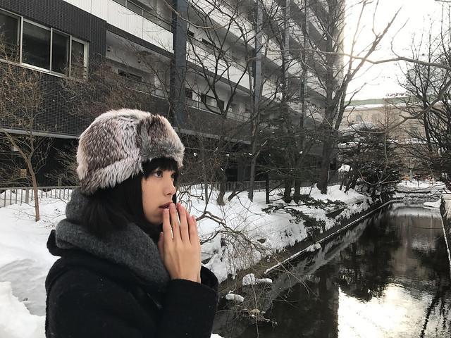 Canal at Sapporo, Hokkaido