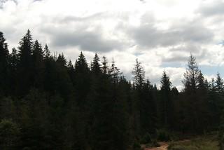 Homorodfürdő (Băile Homorod)