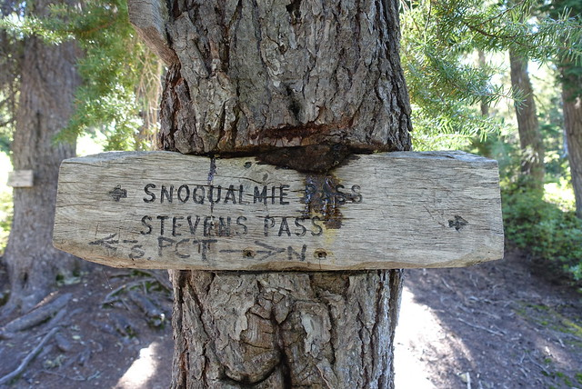 Stevens or Snoqualmie Pass?