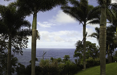 Hawaii-1563-Pano