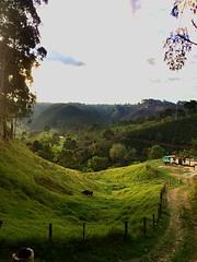 Between Salento and Don Elias' coffee farm.