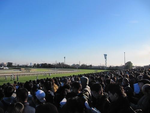 中山競馬場の満員の様子