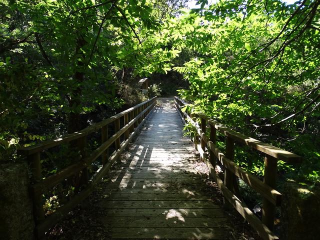 Puente de As Pías sobre el Mandeo