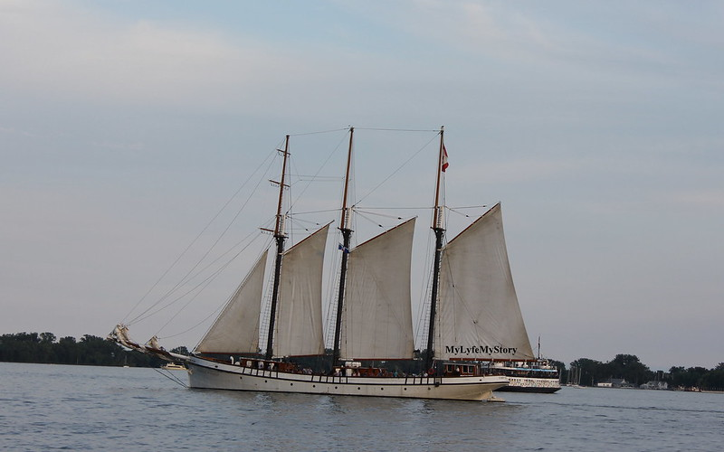 Lakeshore (19)