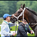 Wedding Toast and her elated connections after her victory in the GI Ogden Phipps S. at Belmont Park