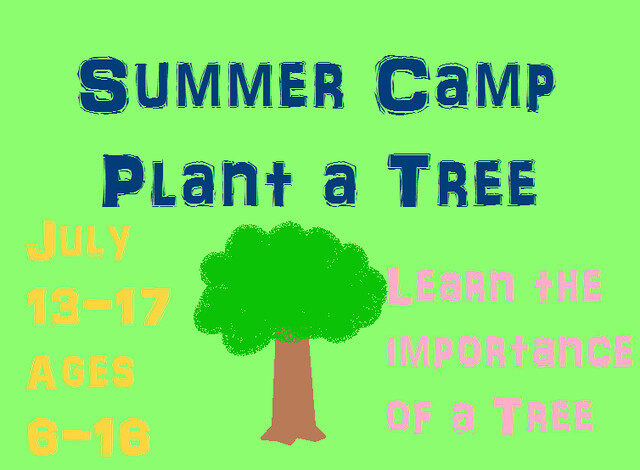 summer camp tree