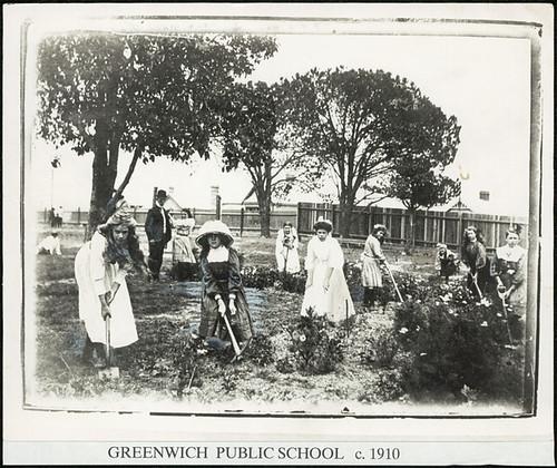 Greenwich Public School - gardening