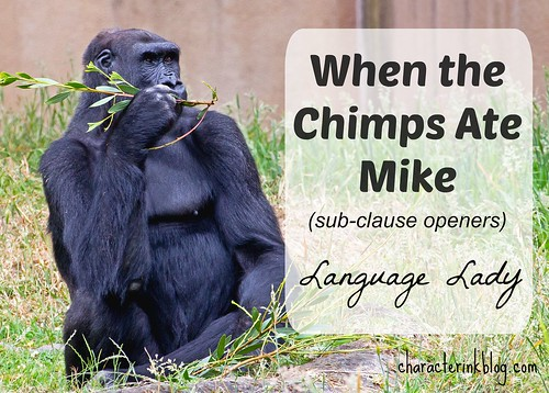 When the Chimps Ate Mike - Subclause Openers