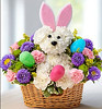 1800Flowers coupon 30% off gift baskets1800Flowers coupon 30% off gift baskets by kassiaab102