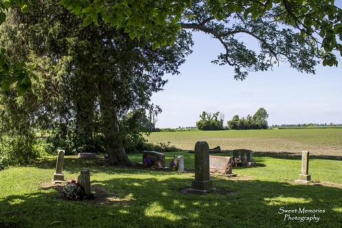 Peaceful Graveyard