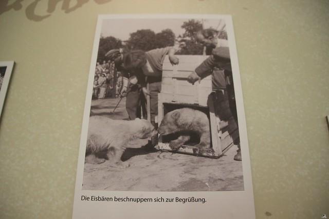 Tierpark Berlin 18.07.2015 0147