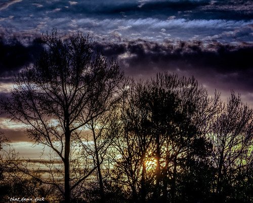 nature trees sunrise dawn clouds southcarolina