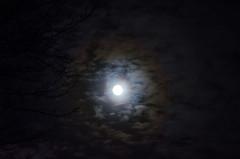 Lunar Exclipse -1
