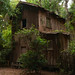 Abandoned House at the Alpine Groves Park by +Lonnie & Lou+
