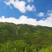 Le mont Albert (1154 m)