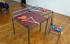 floor, furniture, wood, table tennis, room, table, flooring,