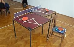 billiard table(0.0), floor(1.0), furniture(1.0), wood(1.0), table tennis(1.0), room(1.0), table(1.0), flooring(1.0),